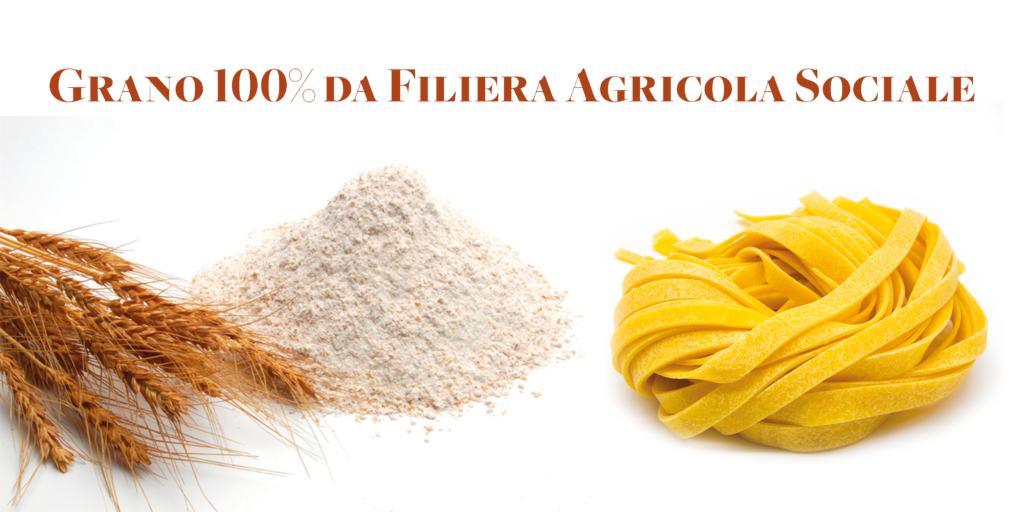 Uno degli ingredienti principali è il grano, che una volta trasformato in farina, si unisce alle uova e forma la tradizionale sfoglia gialla, spessa e ruvida che è alla base dei diversi formati di pasta